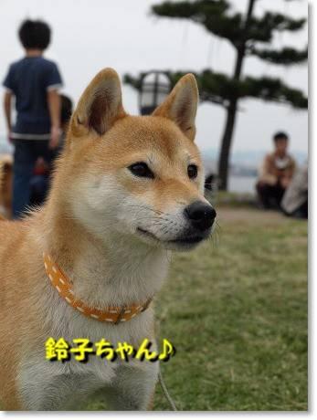 鈴子ちゃん