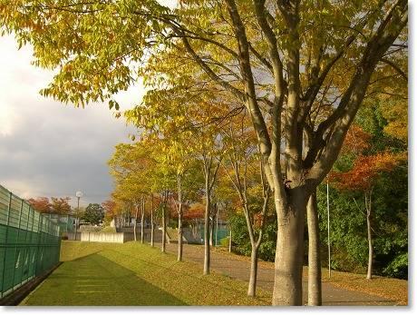 三田の公園