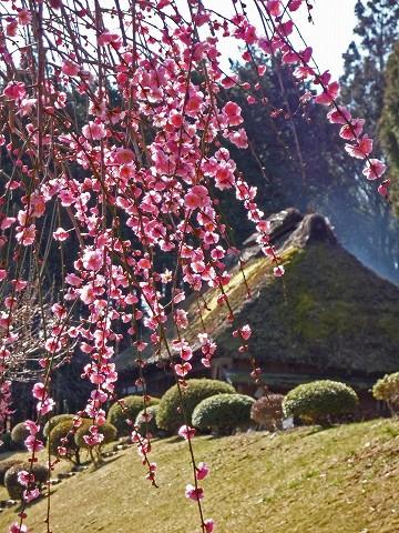 那須風土記の丘2009-3-15