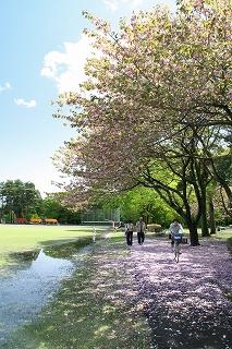 2009.4.27 083井頭公園