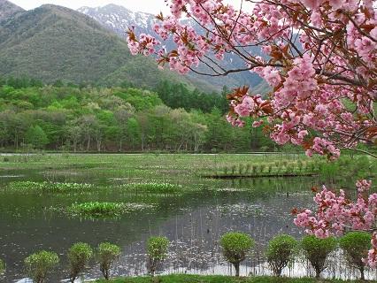 2009.5.14那須北温泉・観音沼・日暮滝 308
