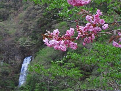 2009.5.14那須北温泉・観音沼・日暮滝 400