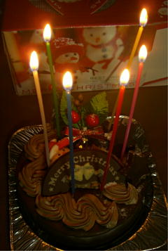 平成20年クリスマスケーキ1