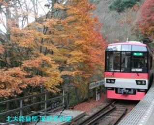 叡山電鉄晩秋2010の特集 2