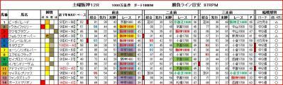 土曜阪神12R