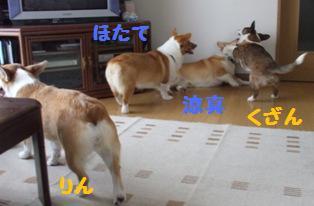 Rin080709-2.jpg