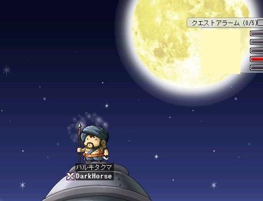 夜月の騎士w