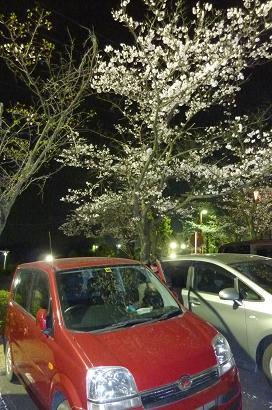 2012ゴルフアベニュー桜