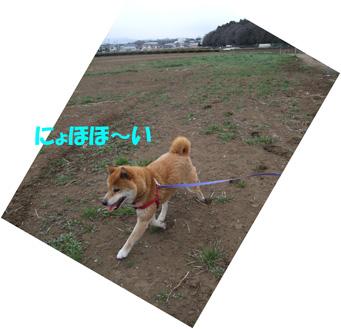 DSCF3406_20090314083540.jpg