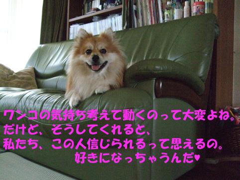 DSCF8480.jpg