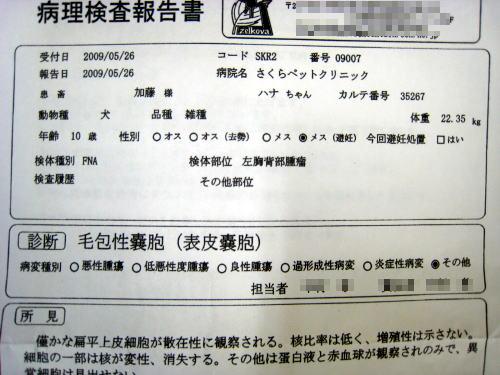 onesho_b.jpg