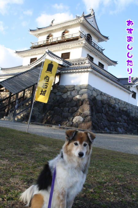 oshougatu3a.jpg