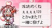 Maple0006 (8)