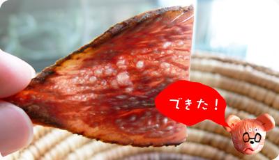 かつおぶしチップス08.jpg
