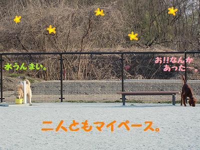 CIMG3957.jpg