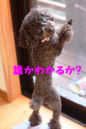 IMG_564920110221.jpg