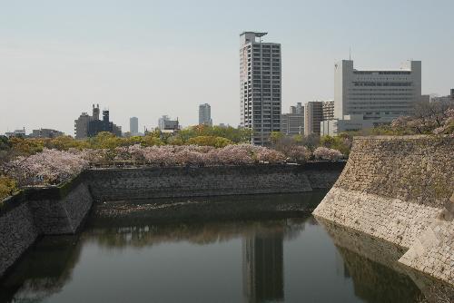 osaka桜006