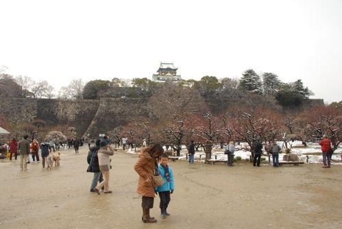 DSC大阪城雪と梅06