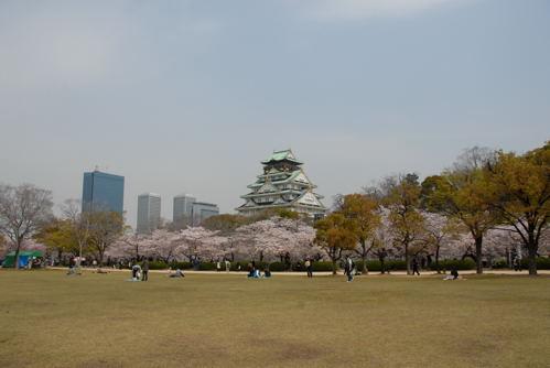 大阪城 桜07