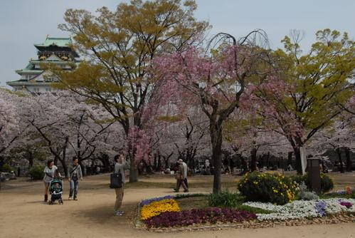 大阪城 桜09