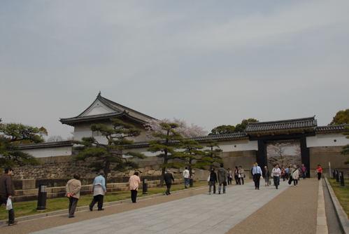 大阪城 桜10