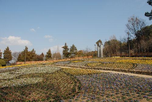 花の文化園002.jpg