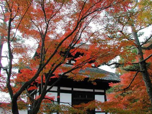 東福寺0002.jpg