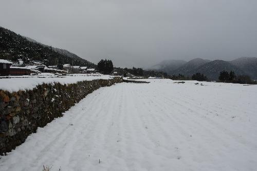 hikoyuki01.jpg
