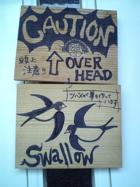 ツバメの巣2009