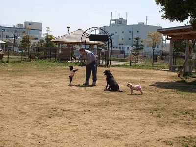 s-2011_04170041.jpg