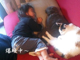 Mizuki乱乳→爆寝