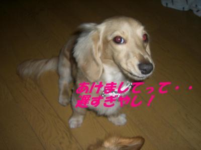 20080112170103.jpg