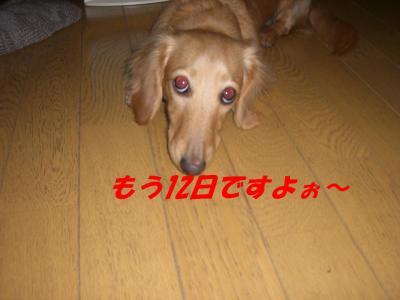 20080112170225.jpg