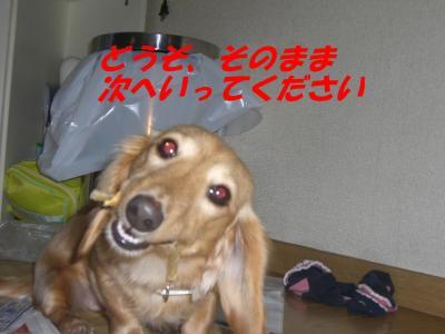 20080112172921.jpg