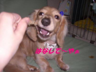 20080112173403.jpg