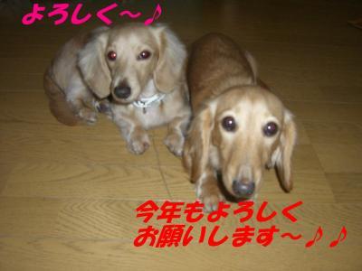 20080112174204.jpg