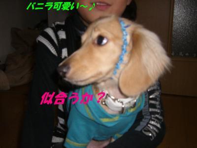 20080116174832.jpg
