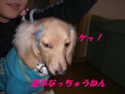 20080116175030.jpg