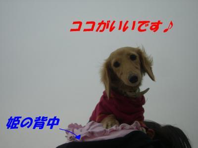 20080116185352.jpg