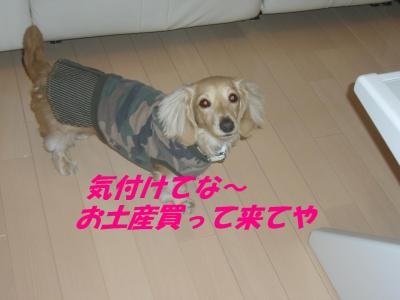コピー ~ ショコラバニラ83 024