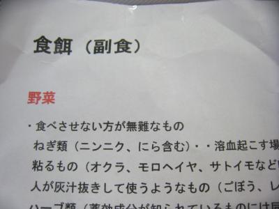 IMG_0201_convert_20110209173559.jpg