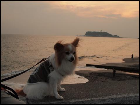 七里ヶ浜3