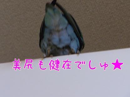 110521_2.jpg