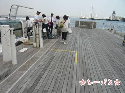 2008-07-12-16.jpg