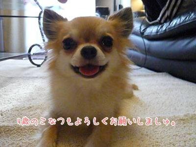 2008-08-02-17_20080803003615.jpg