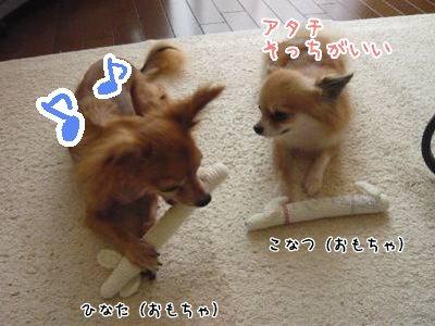 2008-09-06-03.jpg