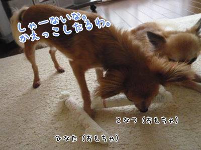 2008-09-06-04.jpg