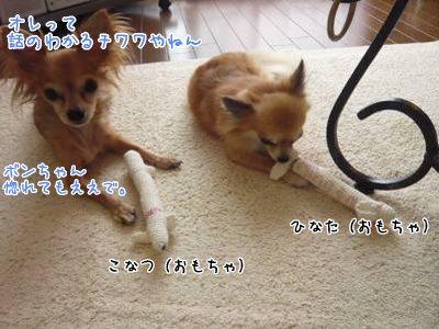 2008-09-06-05.jpg