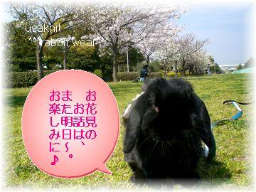 CIMG3436.jpg