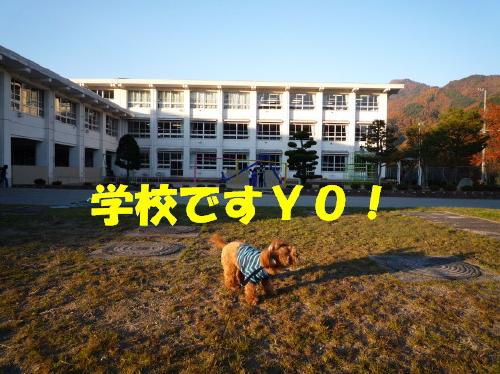 学校ですYO!